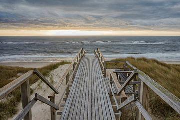Der Weg zum Meer van Beate Zoellner