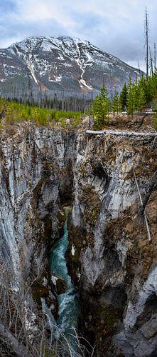 Verticaal panorama (Vertorama) van de Marble Canyon, Canada