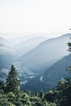 Vue depuis le Feldberg en Forêt Noire sur Dylan Shu
