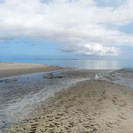Op de grens van Wad en Strand van Jan Huneman