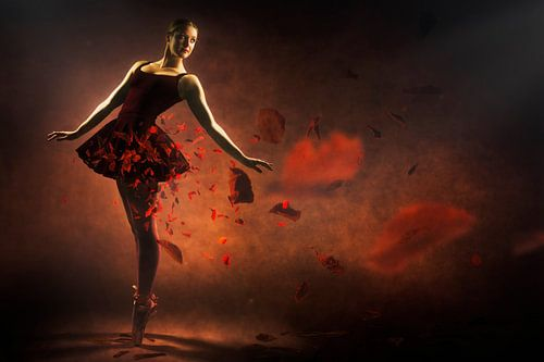 Rode ballerina van