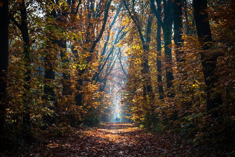Autumn Stroll van William Mevissen