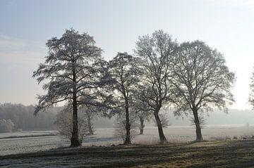 Winter landschap van Corinna Vollertsen