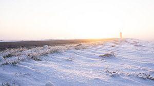 Een vroege vogel in het winterlandschap in Nederland