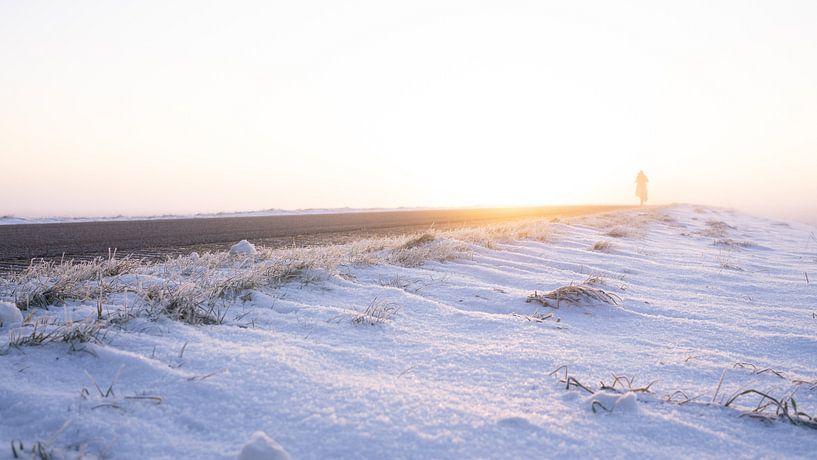 Een vroege vogel in het winterlandschap in Nederland van Visiting The Dutch Countryside