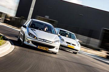 Peugeot 206 en VW Lupo van Sim Van Gyseghem