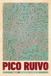Pico Ruivo | Landkarte Topografie (Retro)