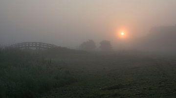 zonsopkomst in Almere, Kromslootpark von Bianca Fortuin
