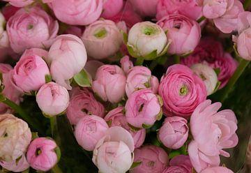 Ein Strauß rosa Pfingstrosen von Spijks PhotoGraphics