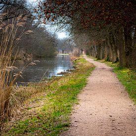 Romantisch wandelpaadje in de Ankeveense Plassen van Rob IJsselstein