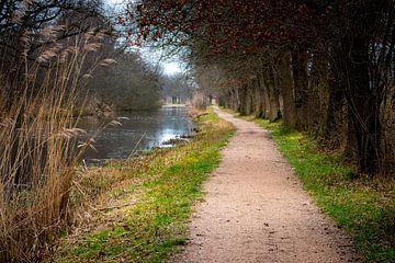 Romantisch wandelpaadje in de Ankeveense Plassen
