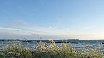 Hiddenseeblick von Ostsee Bilder