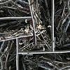 structure in driftwood (002w) van Jeroen van der Meij thumbnail
