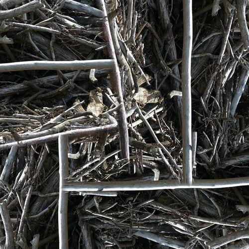 structure in driftwood (002w) van