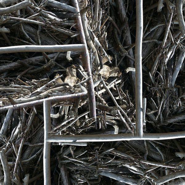 structure in driftwood (002w) van Jeroen van der Meij