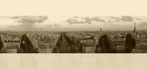 Paris Panoramique! part deux van juvani photo