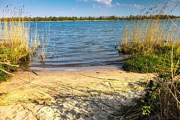 Biesbosch rivier met strandje van Carin IJpelaar