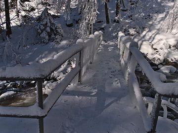 Bevroren brug in het Zwarte Woud van Timon Schneider