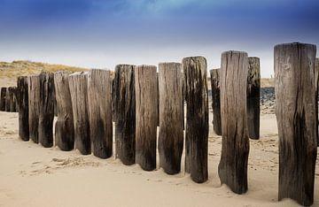 Paaltjes op het strand sur Wim van D