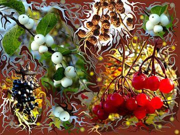 Herbstfülle van Heidrun Carola Herrmann
