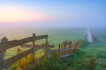 Mistige ochtend op het boerenland