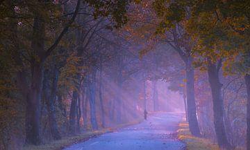 Eenzame jogger natuurgebied De Broekpolder van Karen de Geus