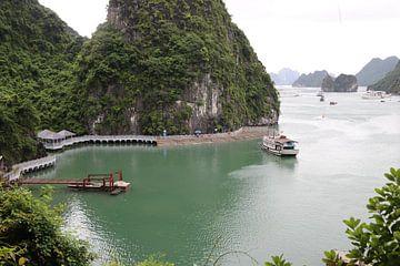 Vietnamees Landschap op de Rivier van mathieu van wezel