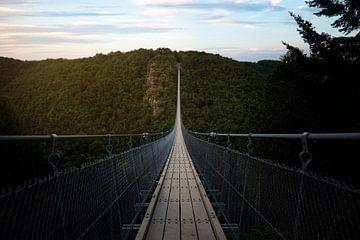 geierlay brug van Kristof Ven
