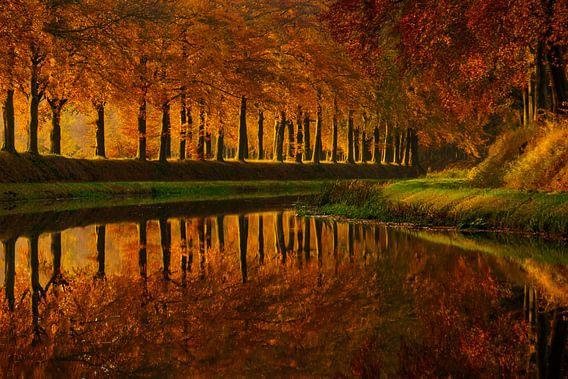 De Schipbeek