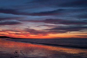 Kleurenpracht op het strand van Laurens van Eijndthoven
