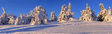 Panorama van de besneeuwde Brocken-top van Karina Baumgart
