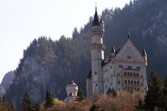 Schloss Neuschwanstein van Gert-Jan Siesling