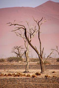 NAMIBIA ... pastel tones I van Meleah Fotografie