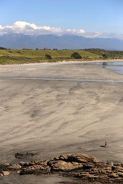 Der Strandspaziergang - Neuseeland von