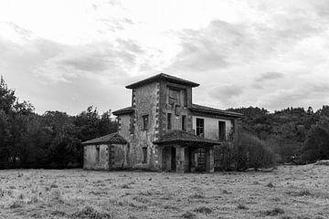 Ruine in einem verlassenen Wald von Ramon Van Gelder