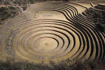 Peru, Moroy, cirkelvormige terrassen in Moroy van Patsy Van den Broeck