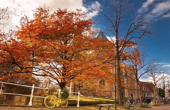 Herfst in Delft