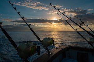 Zeevissen bij zonsopkomst van