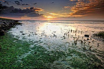 Het wad bij zonsopgang von John Leeninga