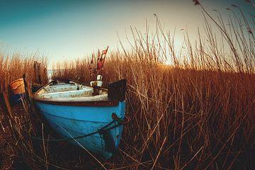 Le bateau est caché dans les roseaux sur Florian Kunde