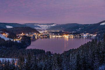 Winter am Titisee im Schwarzwald von Werner Dieterich