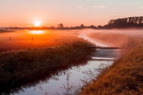 Ochtendmist in de polder van