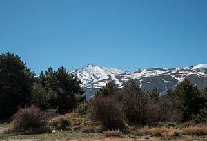 sneeuw op de bergtoppen van de sierra nevada