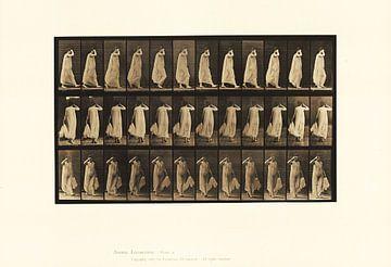 Frau geht in einem dünnen Kleid von Atelier Liesjes
