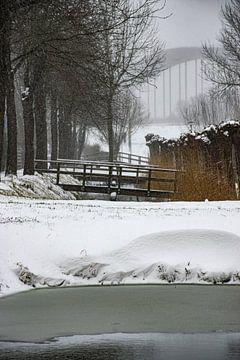 L'hiver à Culemborg sur Ingrid de Vos - Boom