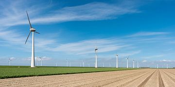 Polderlandschap met windmolens von Jenco van Zalk