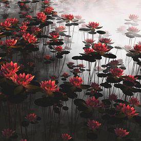 Waterlelies in een vijver van Jan Keteleer