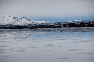 Spiegelung im Eis von Marleen Baas