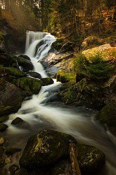 Wasserfall Triberg im Schwarzwald von Max Nicolai