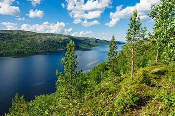 Blick auf den Varangerfjord in Norwegen von Rico Ködder